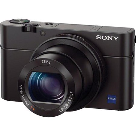 Sony a6300 vs Sony RX100 iii